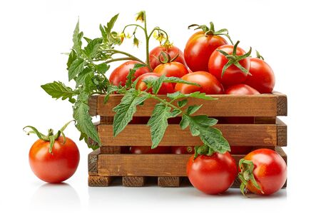 Foto für Harvest tomatoes in wooden box with green leaves and flowers on white - Lizenzfreies Bild