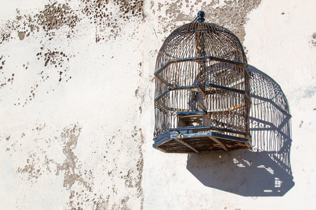 Photo for Empty stylish bird cage hanging on the old wall. - Royalty Free Image