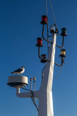 Photo pour Detail of the mainmast with various colorful lights for signalization. Seagull standing. Bright clear blue sky. Essaouira, Morocco. - image libre de droit