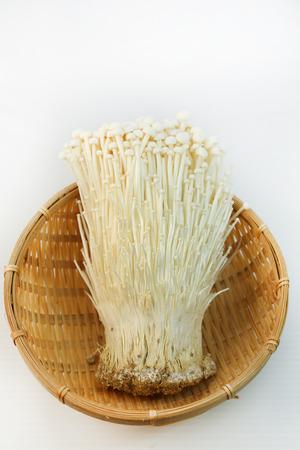 Yasuhiroamano180500007