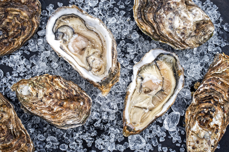 Foto de Fresh rock oyster offered as closeup opened with on crushed ice with copy space - Imagen libre de derechos