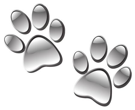 Glassy paw prints