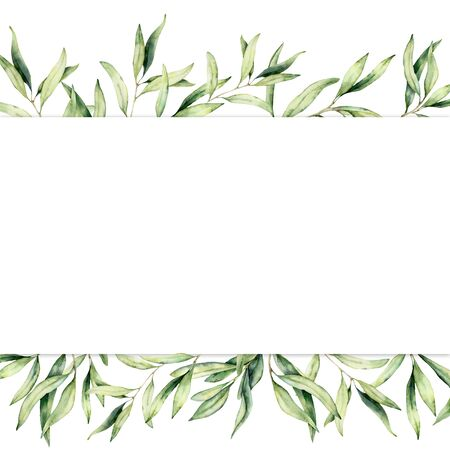 Foto per Watercolor banner with olive branch. Hand painted botanical border isolated on white background. Floral illustration for design, print, fabric or background. - Immagine Royalty Free