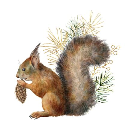 Photo for Watercolor Christmas composition with squirrel and golden branch. Hand painted winter card with pine needles and cones isolated on white background. Ilustration for design, print, fabric, background. - Royalty Free Image