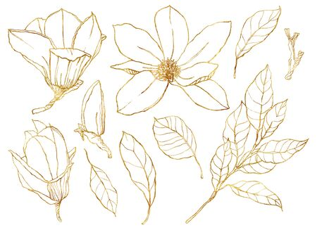 Photo pour Watercolor floral set with golden flowers. Hand painted line art magnolias and leaves isolated on white background. Spring illustration for design, print, fabric or background. - image libre de droit