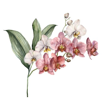 Photo pour Watercolor bouquet with pink and white orchids. Hand painted tropical card with flowers, branches and leaves isolated on white background. Floral illustration for design, print, background. - image libre de droit