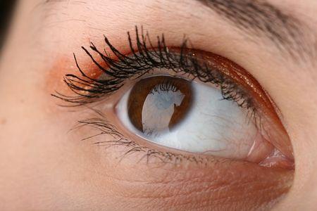 beauty brown eye looking up