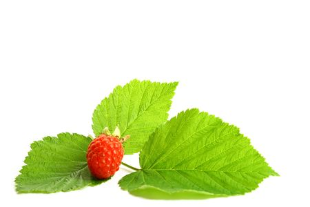raspberry and green isolated on white background