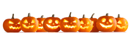 Foto de Many Halloween Pumpkins in a row isolated on white background - Imagen libre de derechos