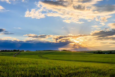 Photo pour Sunset at cultivated land in the countryside on a summer evening with cloudy sky background. Landscape. - image libre de droit