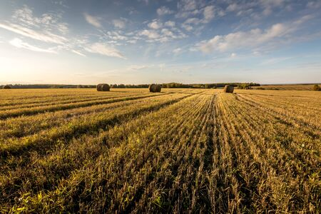 Photo pour Haystacks on the field in autumn sunny daywith cloudy sky background. Rural landscape. Golden harvest of wheat in evening. - image libre de droit