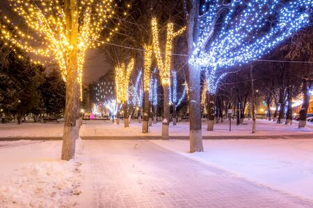 Photo pour Winter park at night with christmas decorations, lights, benches, path and trees. - image libre de droit