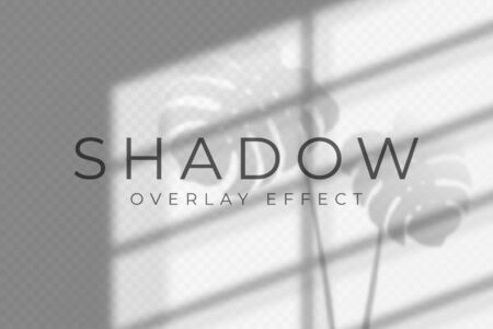 Illustration pour Shadow overlay effect. Vector shadow and light overlay effect, natural lighting scene. Mockup of transparent shadow from windows and monstera leaves. Realistic transparent light refraction - image libre de droit