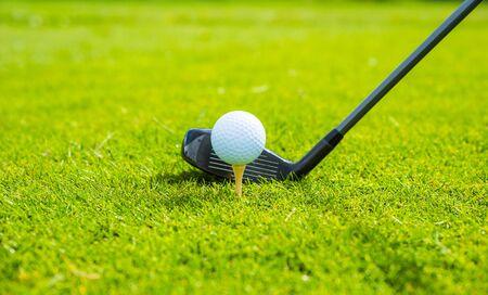 Photo pour golf ball ang club on golf green grass natural  fairway - image libre de droit