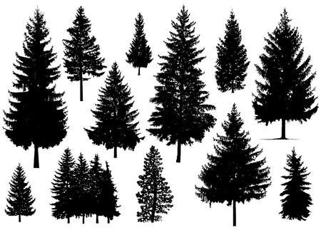 Illustration pour Set. Silhouette of pine trees. - image libre de droit