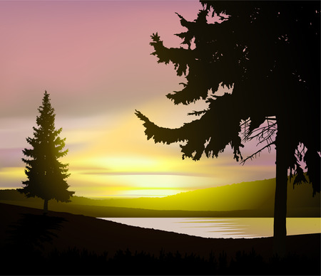 Illustration pour Colorful sky in wild terrain with lake (river) and pine forest. - image libre de droit