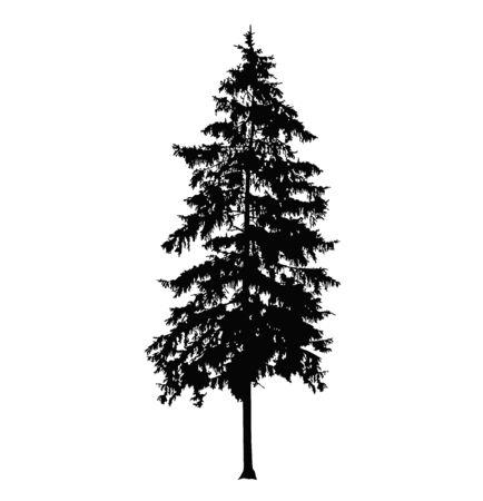 Illustration pour Silhouette of pine tree. Hand made. - image libre de droit