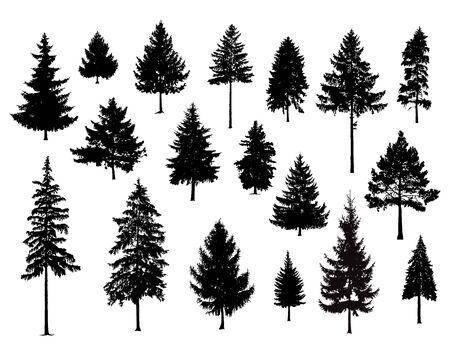 Illustration pour Set. Silhouettes of pine trees. Hand made. - image libre de droit
