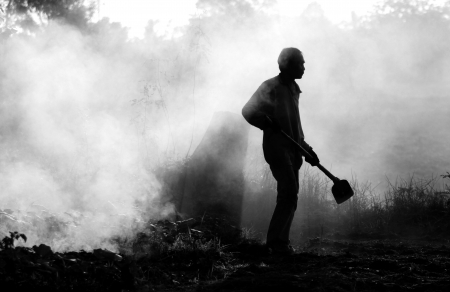 Photo pour Working on farm 3 - image libre de droit