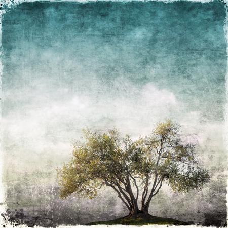 Grunge landscape with single tree