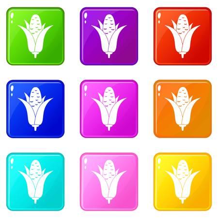 Corncob icons 9 set
