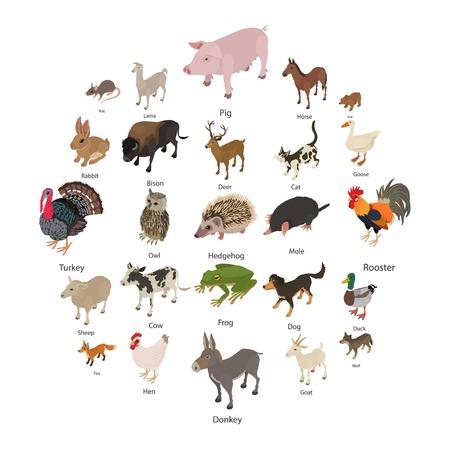 Foto de Animals collection icons set. Isometric illustration of animals collection vector icons for web - Imagen libre de derechos