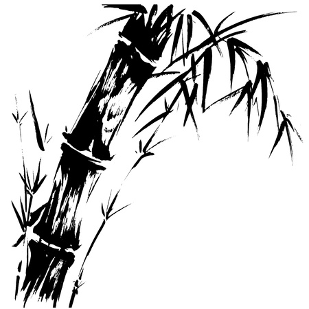 Hand drawn illustration of a bamboo black silhouette against a white background