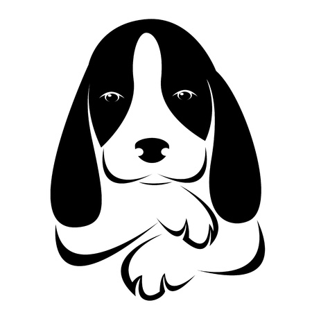 image of an dog on white background