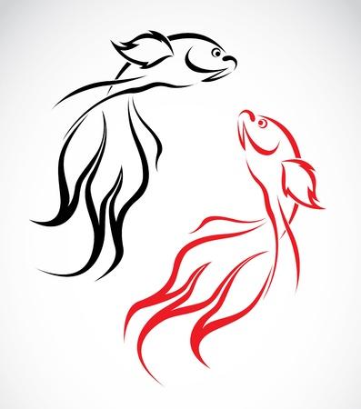 image of an goldfish on white background