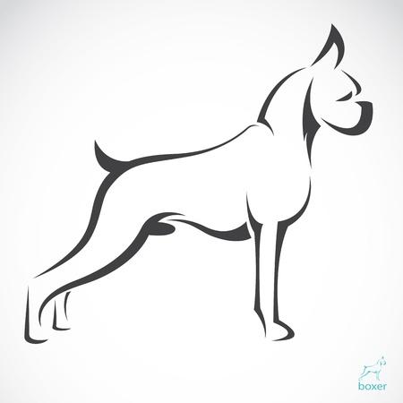 Illustration pour Vector image of an dog boxer  on white background  - image libre de droit