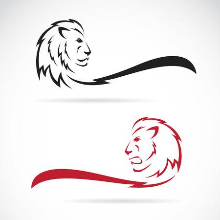 Illustration pour Vector image of a lion on white background - image libre de droit