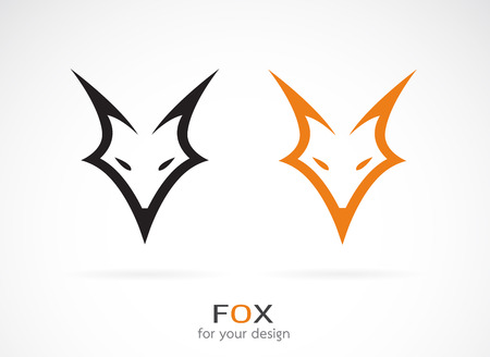 Illustration for Vector image of an fox face design on white background - Royalty Free Image