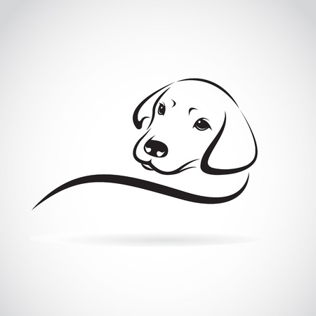 Illustration pour Vector image of an dog labrador on white background - image libre de droit