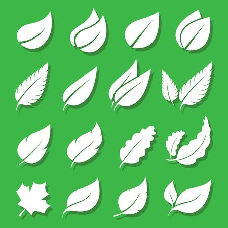 Illustration pour Vector leaves white icon set on green background - image libre de droit