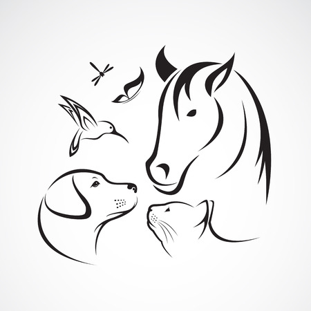 Ilustración de Vector group of pets - Horse, dog, cat, bird, butterfly, dragonfly isolated on white background - Imagen libre de derechos