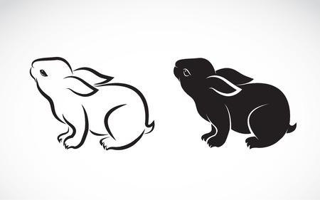 Ilustración de rabbit design on white background - Imagen libre de derechos