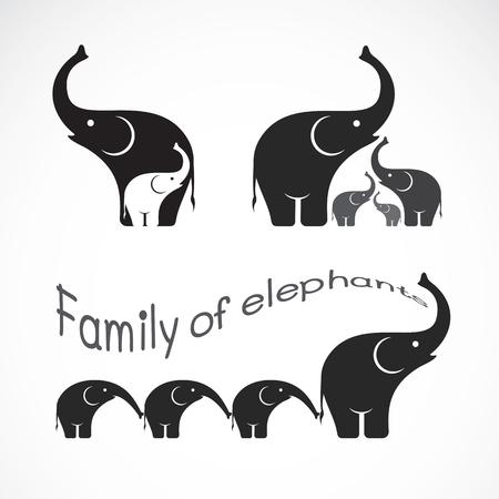 image of family elephants on white background, Elephants design