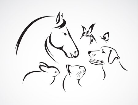group of pets - Horse, dog, cat, bird, butterfly, rabbit isolated on white background
