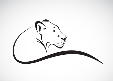 Ilustración de Vector of a lion female design on white background, Wild Animals. - Imagen libre de derechos