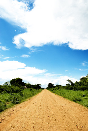 Straight Dirt Road Disappearing into the Distance, Africa