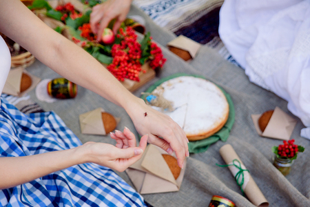 Carefree summer picnic outdoor. Bright and colorful hipster lunch in the park. A bug in a female hand.
