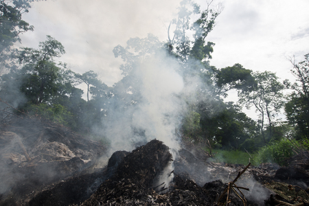Smoke from burning in a natural place, destroying the environment.