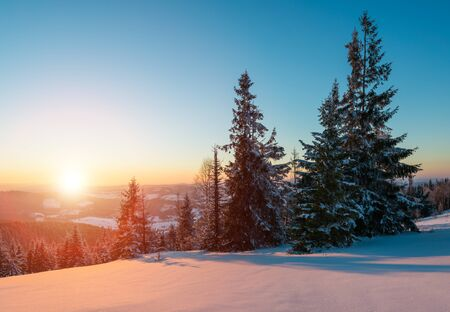 Photo for Mesmerizing landscape of dense coniferous forest growing on snowy hills against a background of blue sky and white clouds on a sunny frosty winter day. Concept of ski resort and trekking - Royalty Free Image