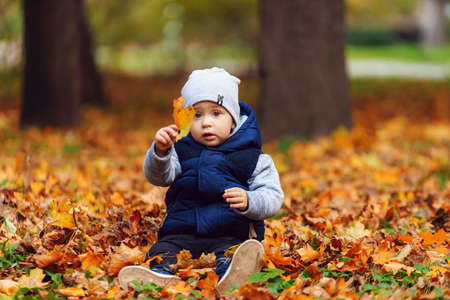 Photo pour Little caucasian boy holding an orange leaf - image libre de droit