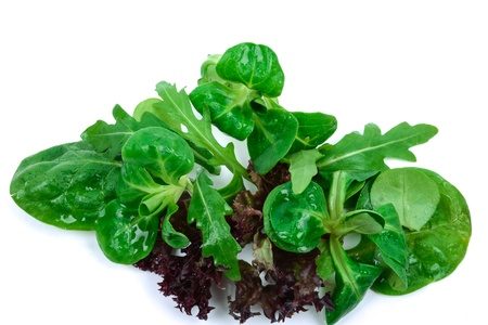 washed mixed green salad isolated on white