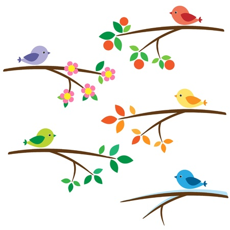 Birds sitting on different branches