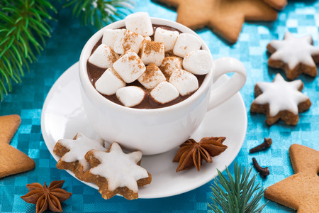 Photo pour hot chocolate with marshmallows on a blue background, top view, close-up - image libre de droit