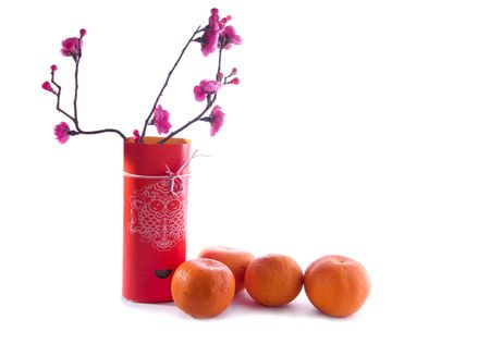 chinese new year decoration,character symbolyzes luck