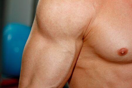 Photo pour Male powerful biceps closeup. Gym. Body-builder. Beautiful, swollen male body. Trainer, advertising, healthy lifestyle. Bodybuilder. The concept of sports - image libre de droit
