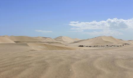 Photo pour Dune in the namib desert - image libre de droit